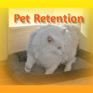 Pet Retention Services